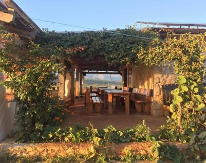 hora vineyard stari grad plain wine tasting dinner croatia split blog review tips and tricks