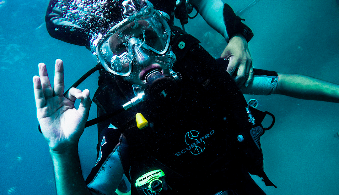 Becoming a PADI Discover Scuba Diving Leader – Deep Blue Scuba