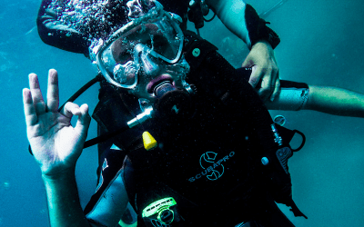 Becoming a PADI Discover Scuba Diving Leader – Deep Blue Scuba