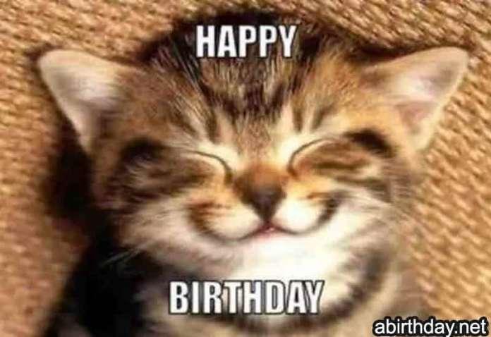 Smiling Cat Birthday Meme