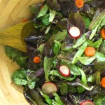 Healthiest Garden Salad
