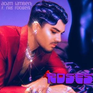 Adam Lambert Roses