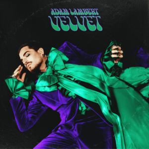 Adam Lambert Velvet.png