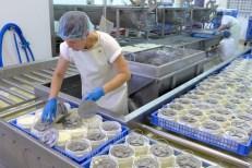 Een veer per kaas vooraleer de kazen worden gestapeld, wat een lichte druk veroorzaakt op elke kaas