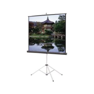 SMAAT 72 X 72 Inches Tripod Projector Screen