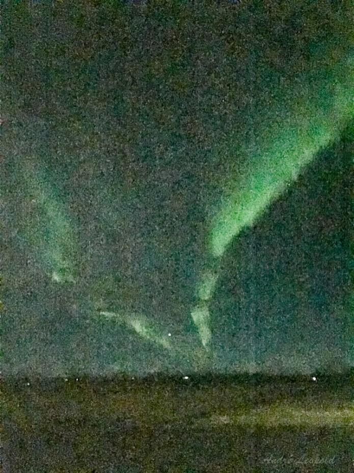Mein erstes Foto eines Polarlichts