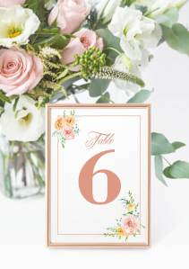 Just Peachy Table Number