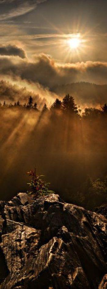 Robert Charity: Smoky Mountains