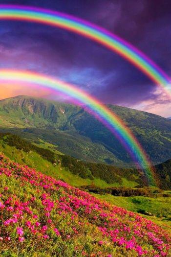 RainbowDouble