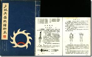тайцзы-цюань и секретное оружие шао-линя