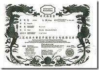 Диплом Олега Рязанцева из Германии