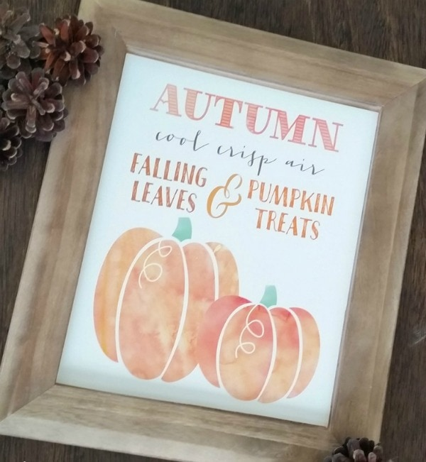 Autumn Pumpkins by Paperelli for Classy Clutter, 30 Free Fall Printables