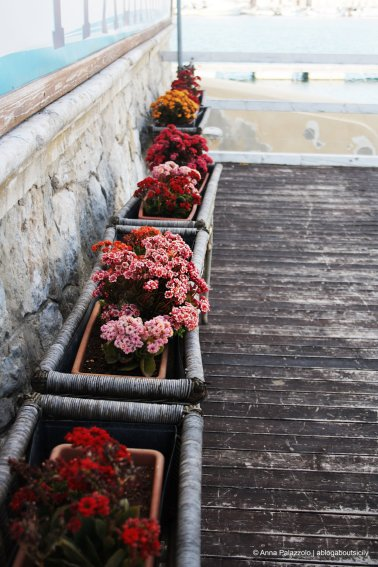 Flowers at Navy League Trapani