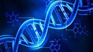 Todos sabemos ya que el ADN es una doble hélice... pero ¿y a simple vista?