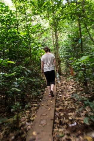 The next day we went trekking in the jungle on Cat Ba to reach one of the highest viewpoints on the island. It was warm, humid and hard.