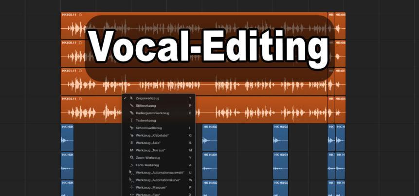 Stimmen bearbeitung, Vocals bearbeiten, Rap Editing
