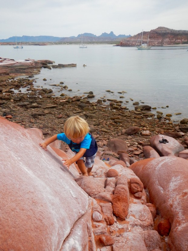 Sully is a great climber and fearlessly climbed the steep red rocks