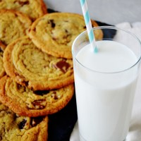 Egg Yolk Chocolate Chip Cookies