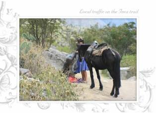 Picture of horse and woman on Peruvian trail