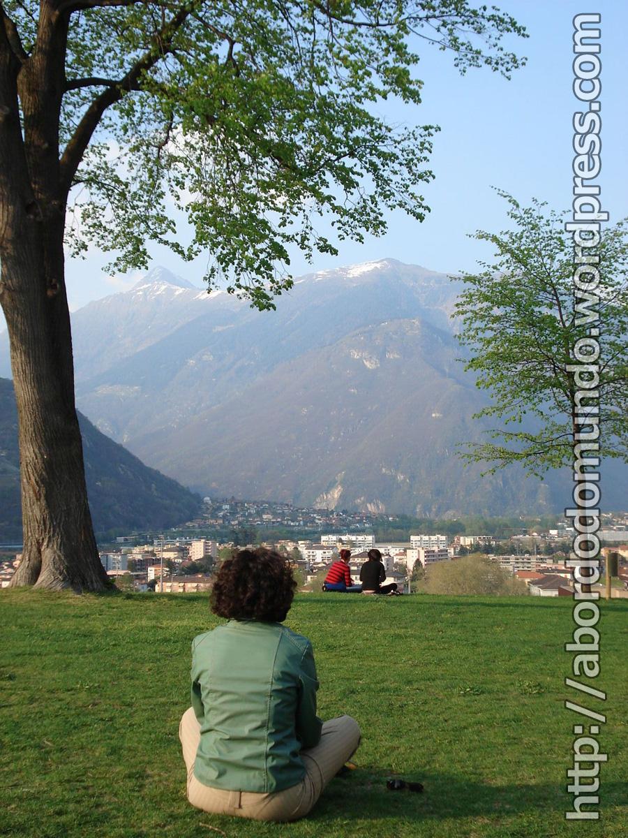 Observando os Alpes
