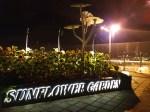 Jardim de girassóis no aeroporto Changi, em Singapura