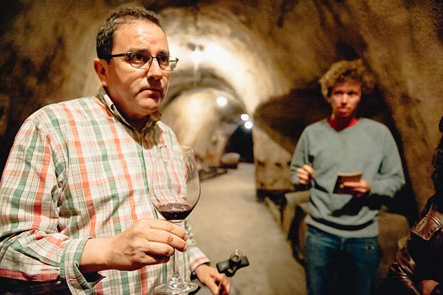 Spanish wines research for exportation