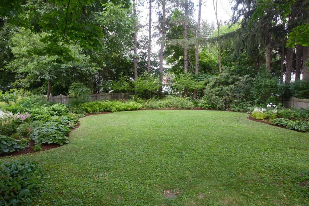 State Street in Northampton MA - Landscape Design - yard 2