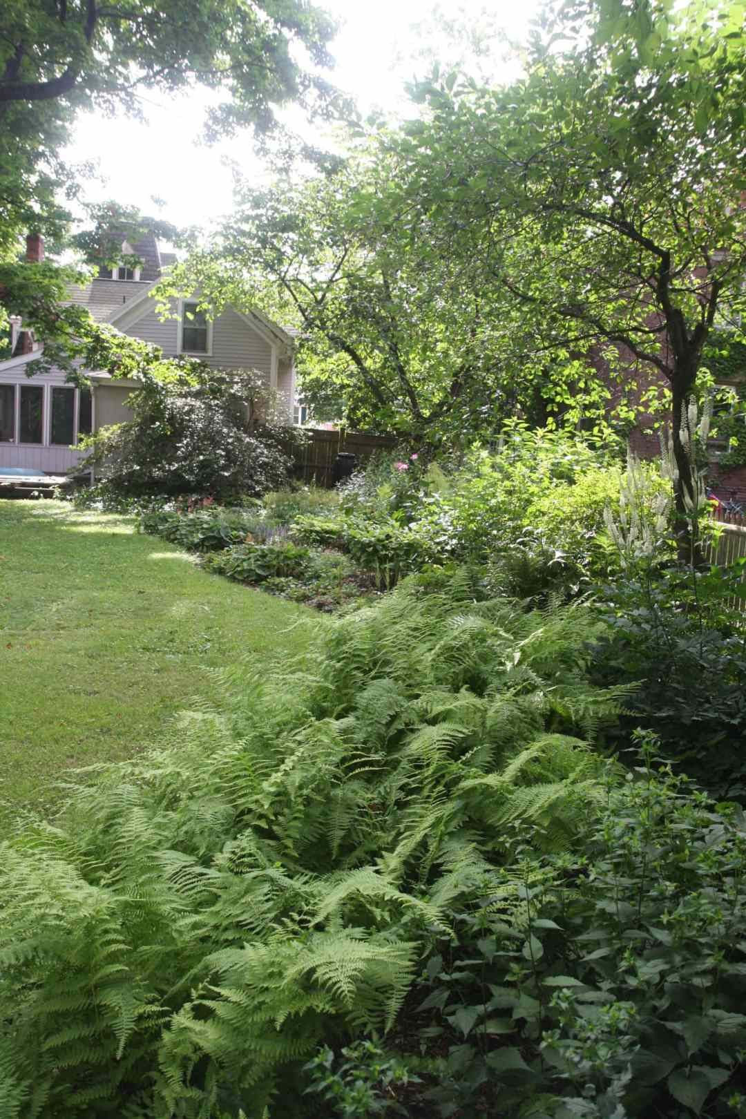 State Street in Northampton MA - Landscape Design - side 2