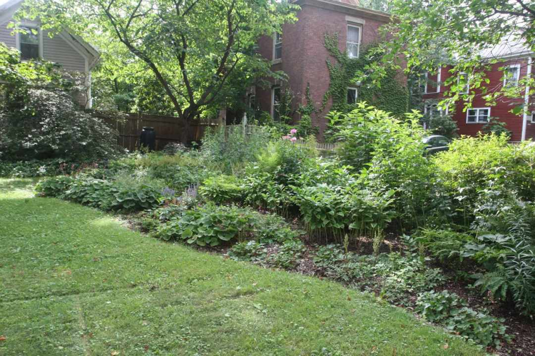 State Street in Northampton MA - Landscape Design - front