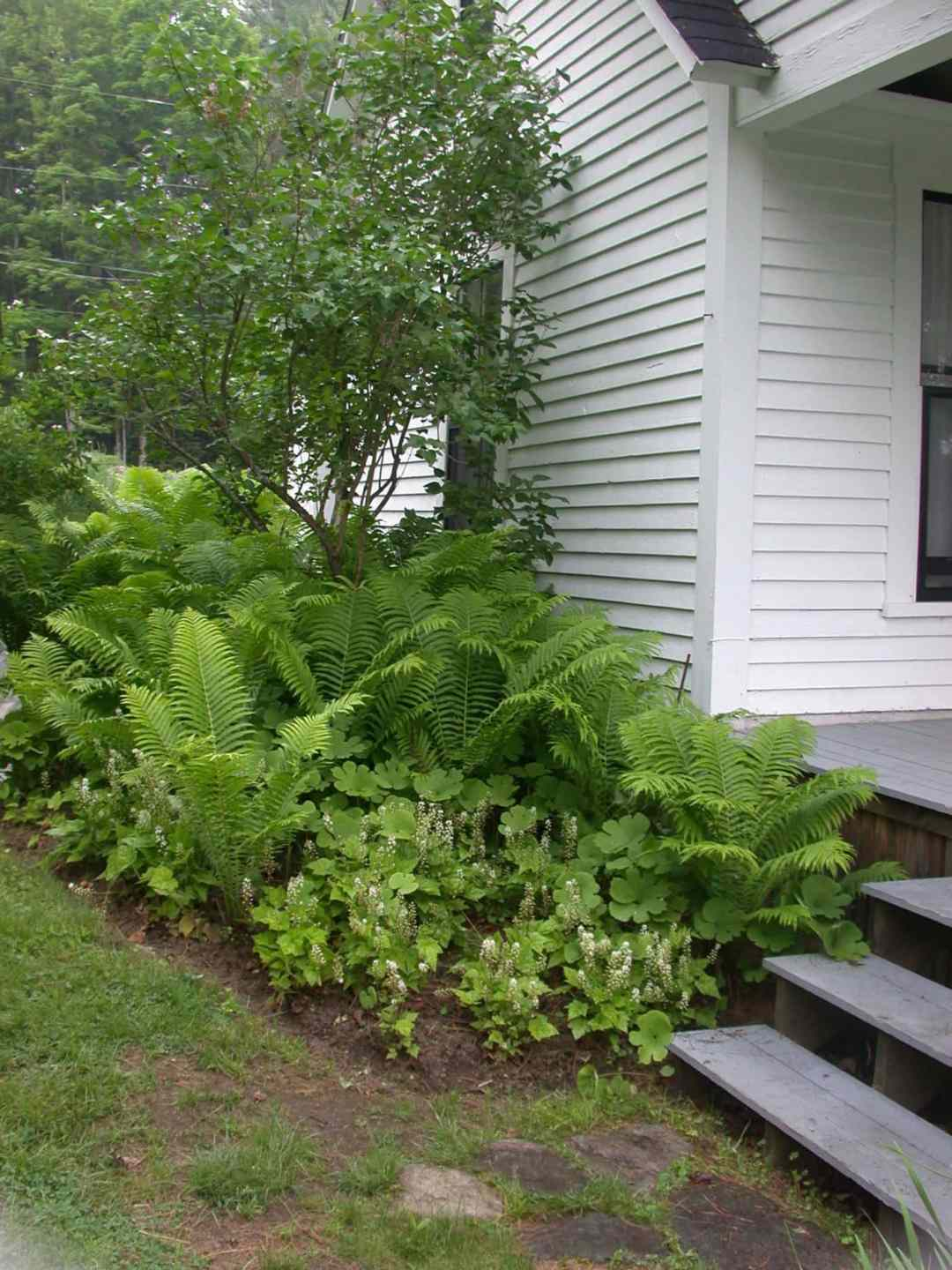 Landscape Design at the Frost Place in Franconia, NH - side