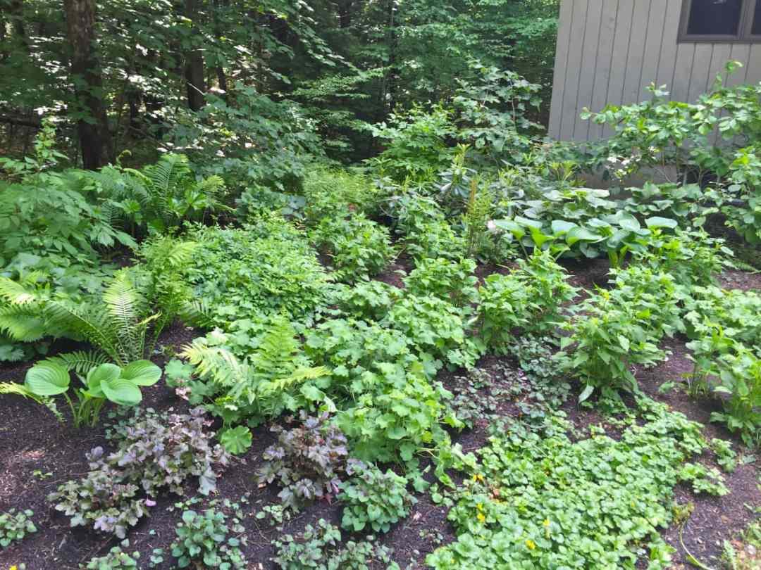 Abound Design - Sustainable Landscape Design in Western MA - 3