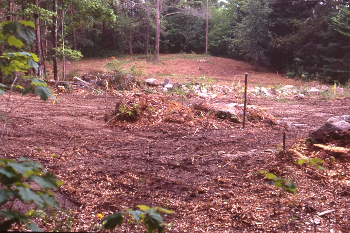 Landscape Design at the Frost Place in Franconia, NH - before