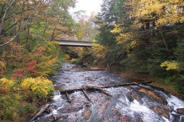 Landscape Design - Montague MA | Abound Design