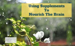 Using Supplements to Nourish the Brain