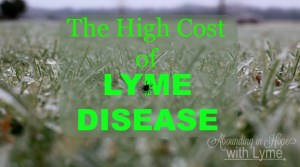 The High Cost of Lyme Disease