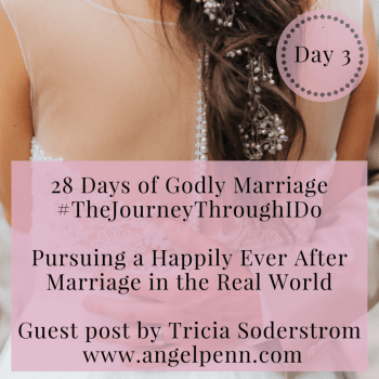 Pursuing a Happily Ever After Marriage in the Real World