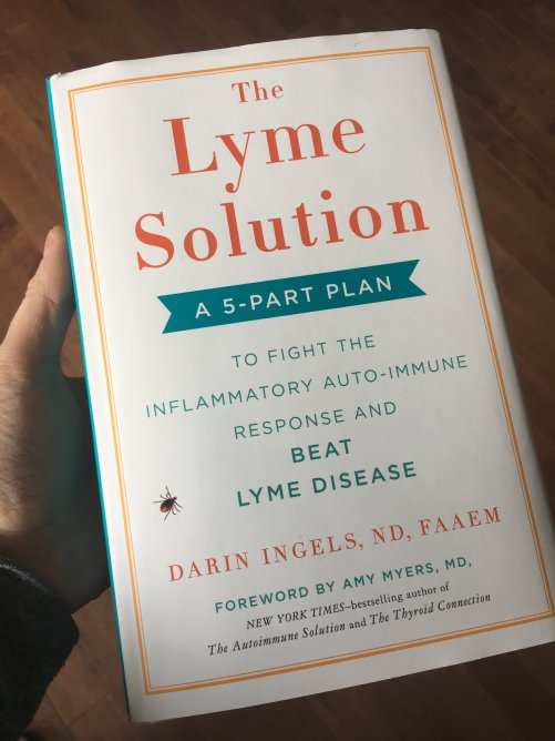 The Lyme Solution Book - My Review