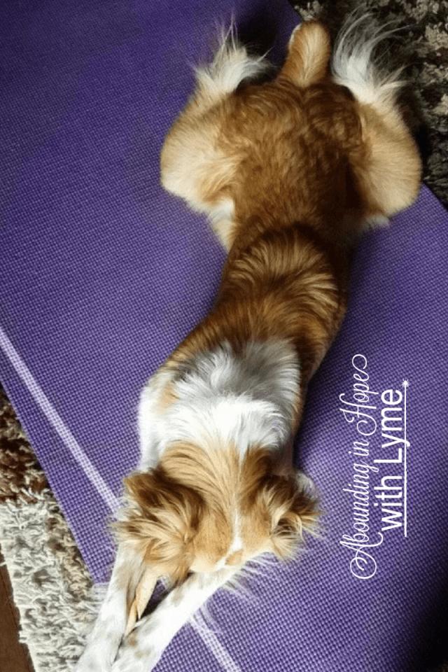 Why I'm Doing Yoga as a Christian