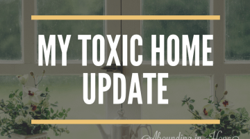 My Toxic Home Update