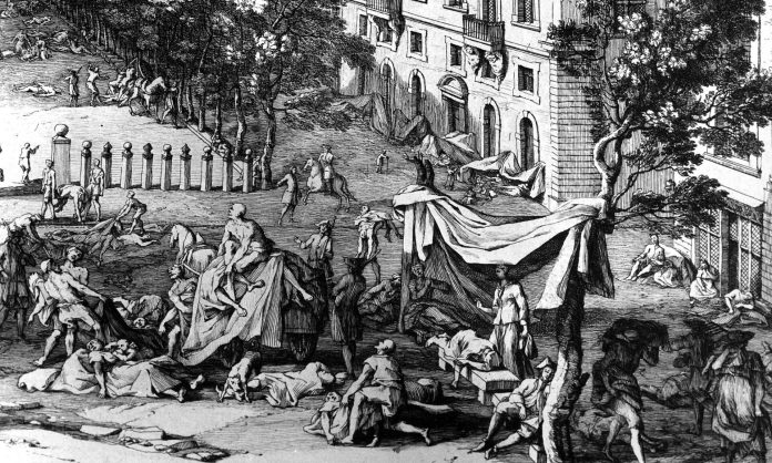 Did Rats Bring The Black Death Plague In The Middle Ages ?
