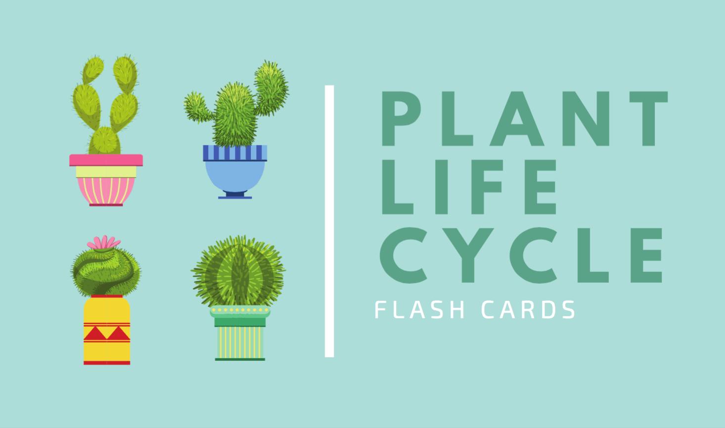 Free Online Flashcard Maker Design Custom Flashcards