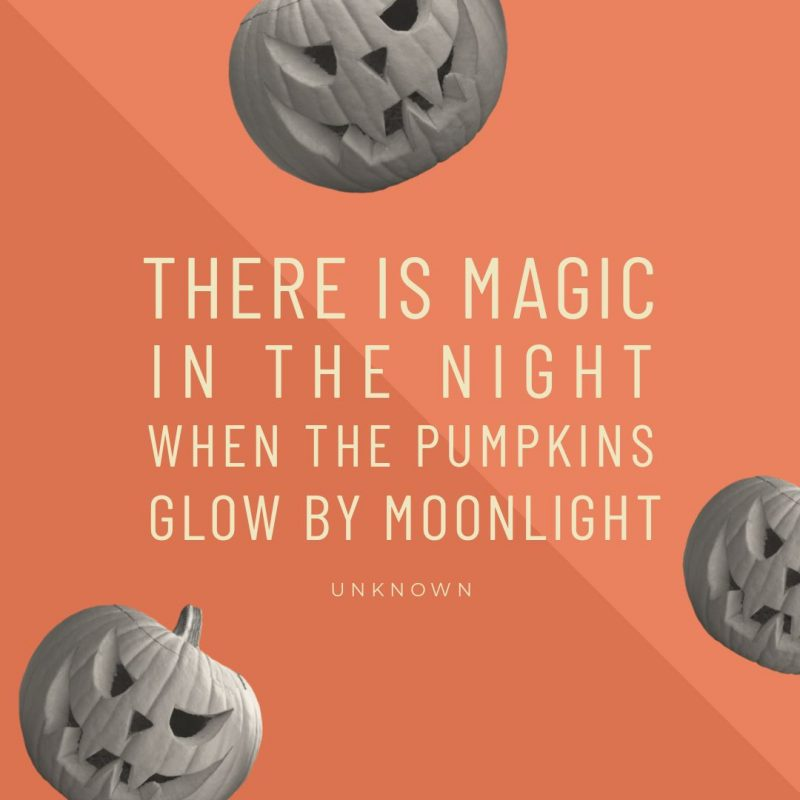 There is Magic In The Night When The Pumkins Glow By Moonlight