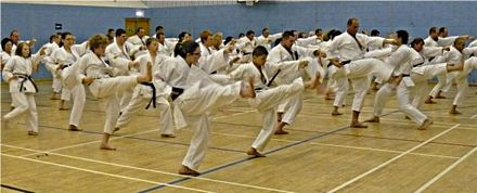 Image result for karate lesson