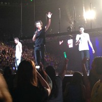 A One Direction concert survival guide