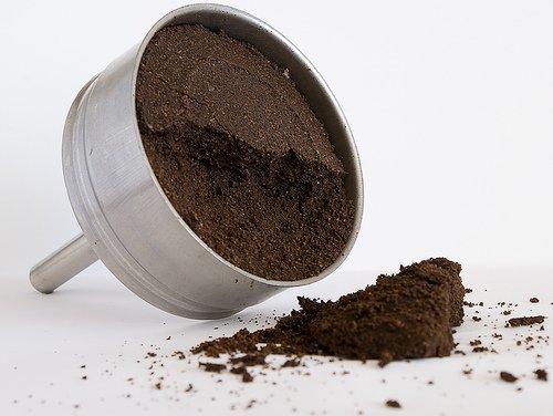 borras-cafe