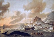BaskavIgin a.k.a. La matanza de los balleneros vascos