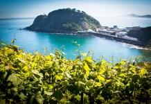 Vista del Ratón de Getaria desde los viñedos de tsakoli