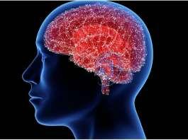 UPV/EHU en la lucha contra el Parkinson (Credit- Tatiana Shepeleva/Shutterstock.com).jpeg