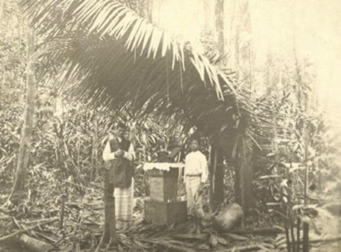 Eucaristia en la selva