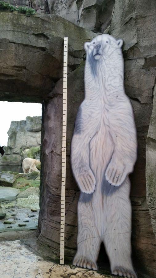 Metermaß Eisbär
